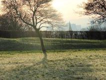 Parc de ville. Images libres de droits