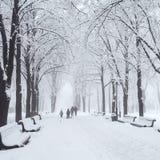 Parc de ville d'hiver Image libre de droits
