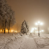 Parc de ville d'hiver. Kiev. Ukraine Photos stock