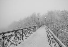 Parc de ville d'hiver. Les amants jettent un pont sur à Kiev. Images libres de droits