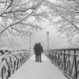 Parc de ville d'hiver. Les amants jettent un pont sur à Kiev. Images stock