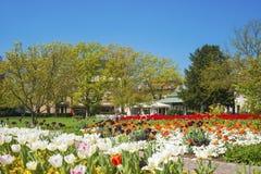 Parc de ville dans Ettlingen Photos stock