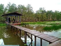 Parc de Wasur Image stock