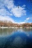 Parc de Zong-jiao-lu-kang de ressort avec des oiseaux Images stock