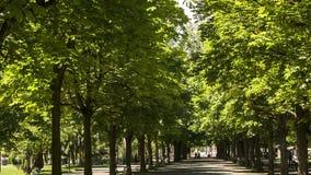 Parc DES-Bastionen in Genf, die Schweiz stock video