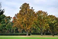 """Parc du Cinquantenaire †""""Jubelpark bryska _ Fotografering för Bildbyråer"""