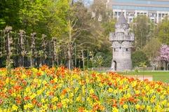 Parc du Cinquantenaire Full dei tulipani tulipa e La Tour de Tournai nella parte posteriore immagine stock