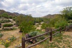 Parc du sud de montagne, Phoenix, Arizona images stock
