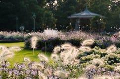 Parc du Thabor, het Gelijk maken stock foto