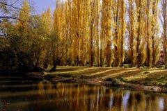 Parc en automne Image libre de droits