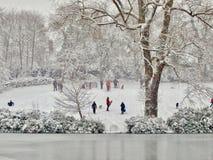 Parc en hiver Images libres de droits