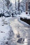 Parc en hiver Photos libres de droits