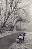 Parc en hiver Image libre de droits
