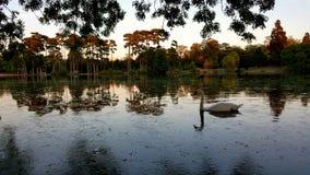 Parc en París Imagen de archivo libre de regalías