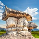 Parc en pierre naturel Photos libres de droits