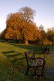 Parc et banc de ville de Diss Image libre de droits