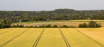 Parc et champ de panneau solaire photos libres de droits