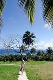 Parc extérieur dans le cuisinier Islands de Rarotonga Photographie stock