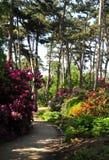 Parc floreale fotografie stock libere da diritti