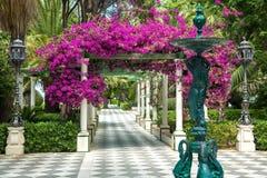 Parc Genovés in Cádiz. Beautiful entrance to the part of the parc Genovés in Cádiz, Spain stock images