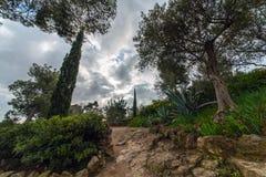 Parc Guell trädgård Royaltyfria Foton