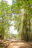 Parc historique de batte de Phu Phra image libre de droits