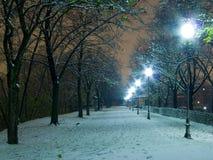 Parc illuminato di notte della neve Fotografie Stock Libere da Diritti
