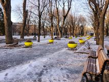 Parc La Fontaine - Alley of trees. Alley of trees in winter at the Parc La Fontaine in Montreal stock photo