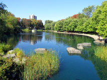 Parc Lafontaine in Montreal. The lake in Parc Lafontaine in Montreal in early autumn Royalty Free Stock Images