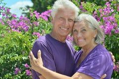 Parc mûr de couples au printemps Photos libres de droits