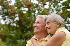 Parc mûr de couples au printemps Image libre de droits