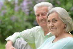 Parc mûr de couples au printemps Photos stock