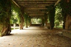 Parc Maria Luisa à Séville, Espagne photo libre de droits