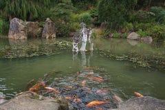 Parc Mondo Verde, bild av den japanska trädgården Royaltyfria Bilder