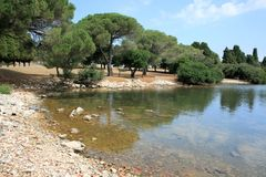 Parc national Brioni, Croatie Images stock
