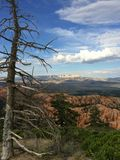 Parc national Bryce Canyon, Utah Etats-Unis Images stock