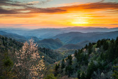Parc national Carolina Scen du nord cherokee de Great Smoky Mountains Photos stock
