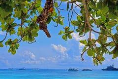 Parc national d'îles de Similan Image stock