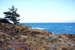 Parc national d'Acadia Photographie stock libre de droits