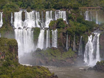 Parc national d'Iguazu Photo stock