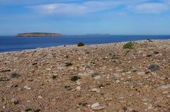 Parc national de baie de cercueil, péninsule d'Eyre Photographie stock libre de droits