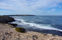 Parc national de baie de cercueil, péninsule d'Eyre Images libres de droits
