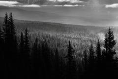 Parc national de Banff de lever de soleil de vallée de montagne photos libres de droits