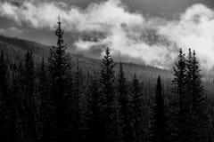Parc national de Banff de lever de soleil de vallée de montagne image stock