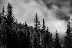 Parc national de Banff de lever de soleil de vallée de montagne images stock