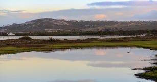 Parc national de côte ouest - Afrique du Sud Image stock