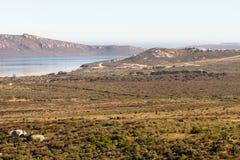 Parc national de côte ouest - Afrique du Sud Images stock