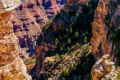 Parc national de canyon grand Image stock