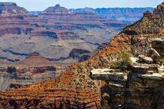 Parc national de canyon grand photo libre de droits