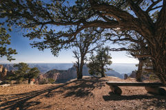 Parc national de canyon grand, Etats-Unis Photos stock